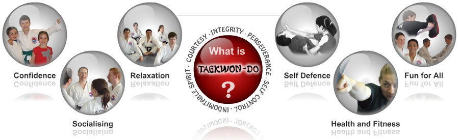 What is Taekwon-Do?
